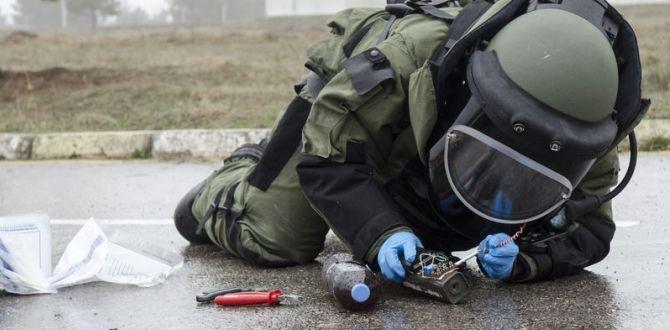 Yakalanan Bombalar ve Diğerleri